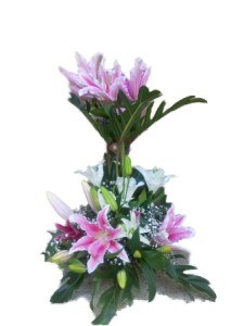 Pink lillies arrangement