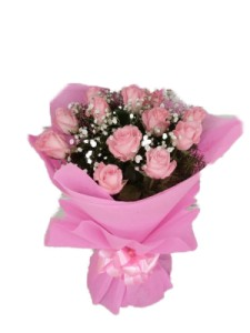 Pink roses gift
